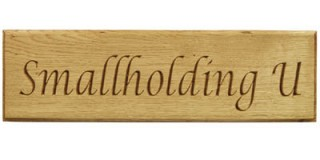 Carved Oak - Wooden House Sign - 1 row
